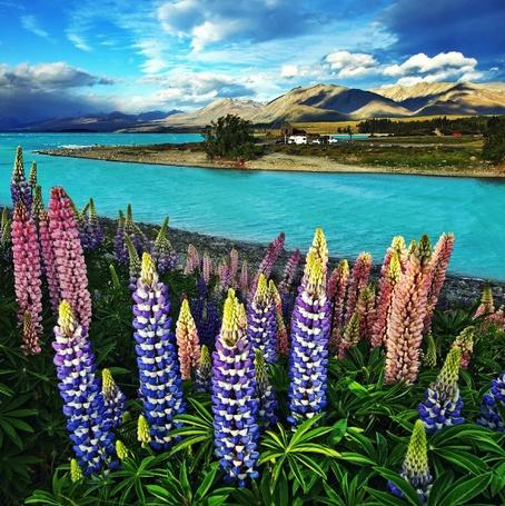Фото Озеро Tekapo, Новая Зеландия / New Zealand