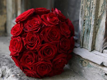Фото Букет красных роз (© Banditka), добавлено: 09.01.2013 21:14