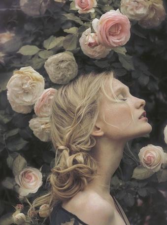 Фото Девушка с закрытыми глазами  в розах (© ), добавлено: 10.01.2013 20:23