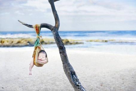 Фото Малыш спит на дереве закутан в куске ткани, фотограф Трайси Равер в соавторстве Келли Руден / Photographer Tracy Ravera co Kelly Ruden