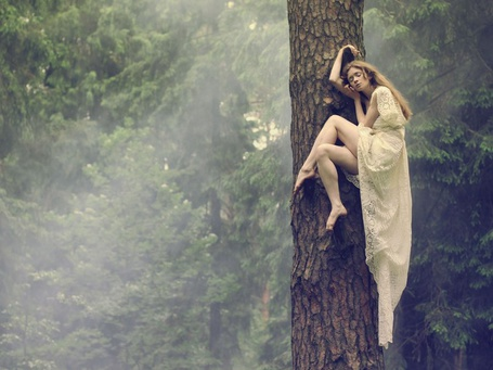 Фото Девушка спит на дереве, фотограф Катерина Плотникова / рhotographer Katerina Plotnikova (© Black Tide), добавлено: 11.01.2013 04:41