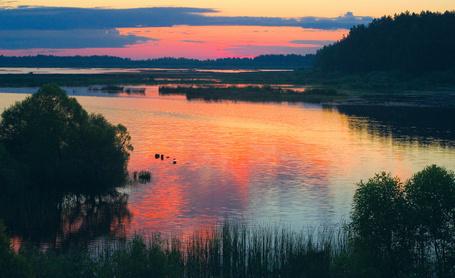 Фото Красивое озеро с берегами, заросшими зелёной травой на фоне заката, работа фотографа Валерия Пешкова (© Felikc), добавлено: 13.01.2013 14:47