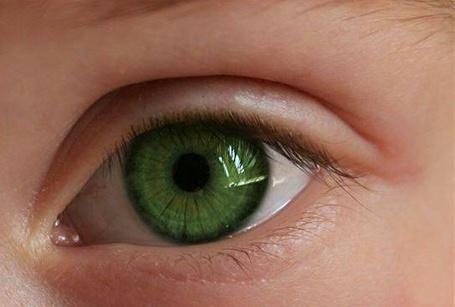 Фото Зелёный глаз ребёнка (© aleksej), добавлено: 15.01.2013 08:57