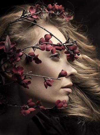 Фото Девушки , на лице которой веточка с цветочками (© ), добавлено: 15.01.2013 17:59