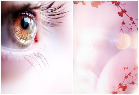 Фото Карий глаз и нарисованные на розовом фоне ветки