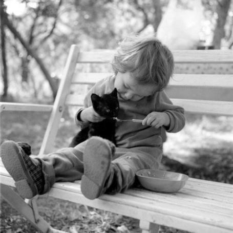 Фото Ребенок кормит маленького черного котенка на лавочке в парке