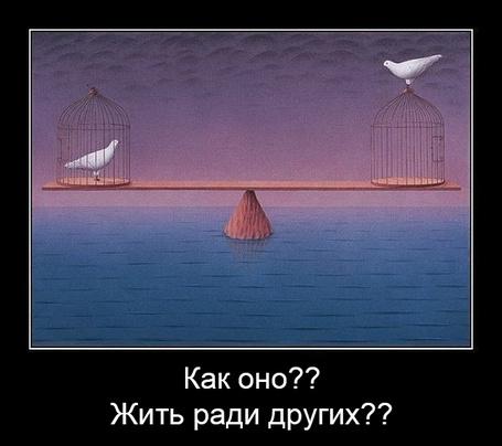 Фото Демотиватор: 'Как оно?? Жить ради других??' (Птицы: одна в клетке, другая на клетке)