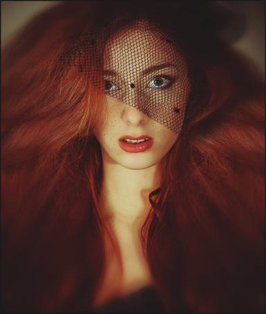 Фото Девушка с черной вуалью на лице (© Danusha), добавлено: 19.01.2013 23:46