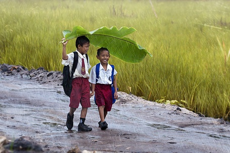 Фото Дети идут по дорожке, прячась от дождя большим листом, фотограф Кендисан Серуян / Kendisan Seruyan
