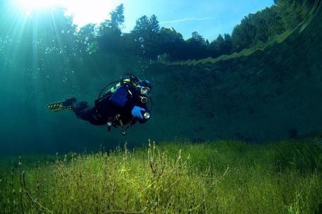 Фото Водолаз плавает в кристально чистом озере Sameranger в Тироле, Австрия. Фотография была сделана на глубине 3 метров / Tyrol, Austria (© ), добавлено: 31.01.2013 02:21