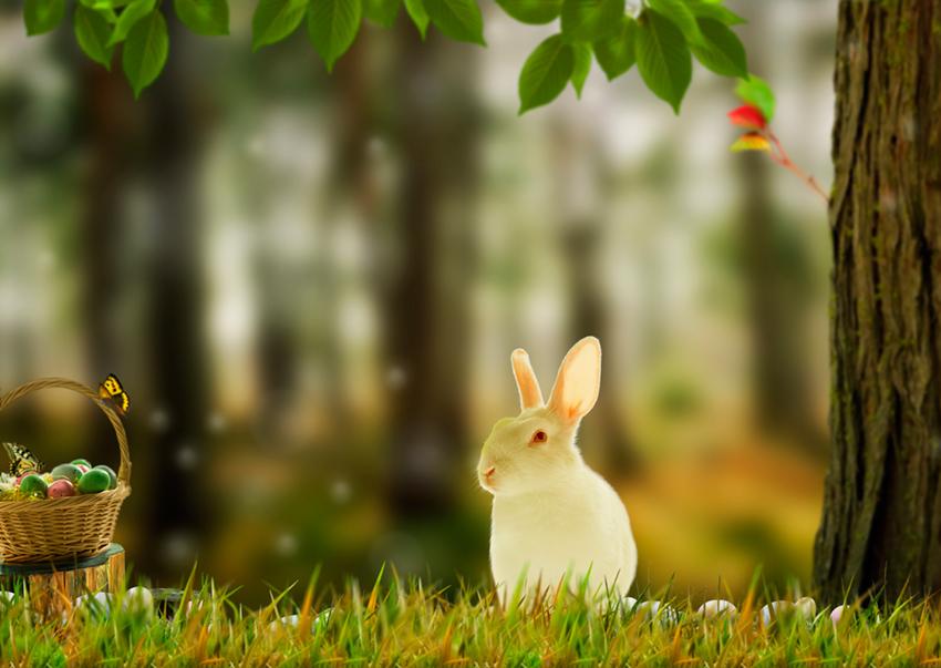 Фото Белый кролик, сидящий на лужайке около дерева, рядом корзина с пасхальными яйцами