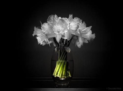Купить букет цветов с доставкой