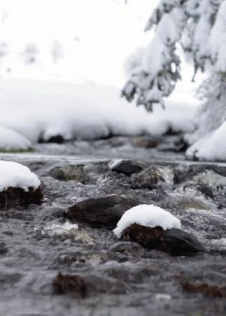 Фото Не замерзший маленький ручей, протекающий в зимнюю пору (© Banditka), добавлено: 03.02.2013 11:51