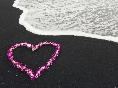 Фото Сердечко, выложенное из розовых цветов на морском пляже