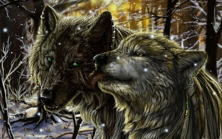 Фото Волчица облизывает волка
