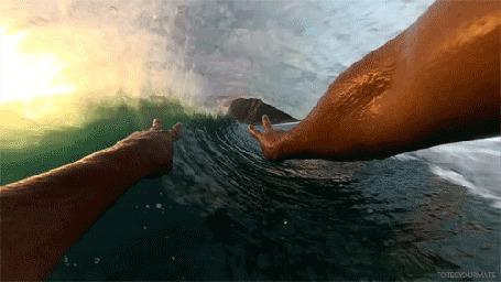 Фото Руки серфингиста в волне