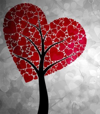 Фото Дерево любви, у которого крона выглядит в форме сердечек