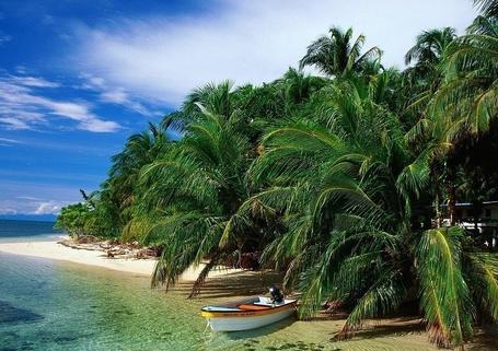 Фото Остров Бокас-дель-Торро, Панама / Bocas del Toro, Panama (© ), добавлено: 15.02.2013 09:54