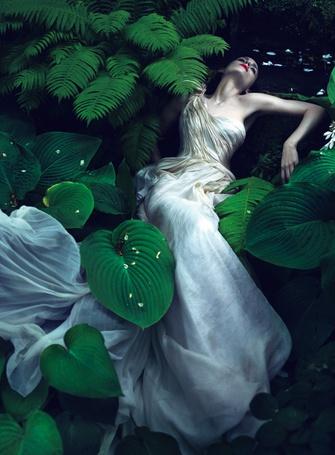 Фото Актриса Rooney Mara / Руни Мара в белом платье лежит в зелени, фотосессия для журнала Vogue
