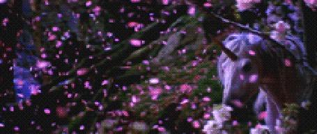 Фото Белый пегас скачет среди летящих розовых лепестков