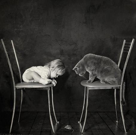 Фото Девочка и кот, сидящие на стуле друг против друга, смотрят на мышку на полу, фотограф  Andy Prokh