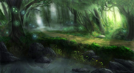 Фото Дорога в туманном лесу, на переднем плане небольшой водоем