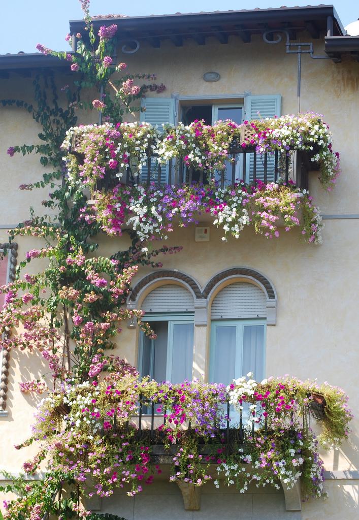 Фото дом, балконы которого украшены цветами.