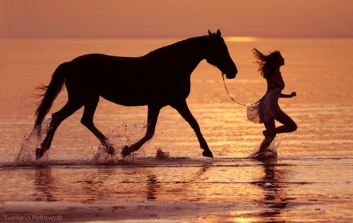 Девушка и лошадь бегут по берегу моря на закате солнца,Фотограф Светлана Петрова