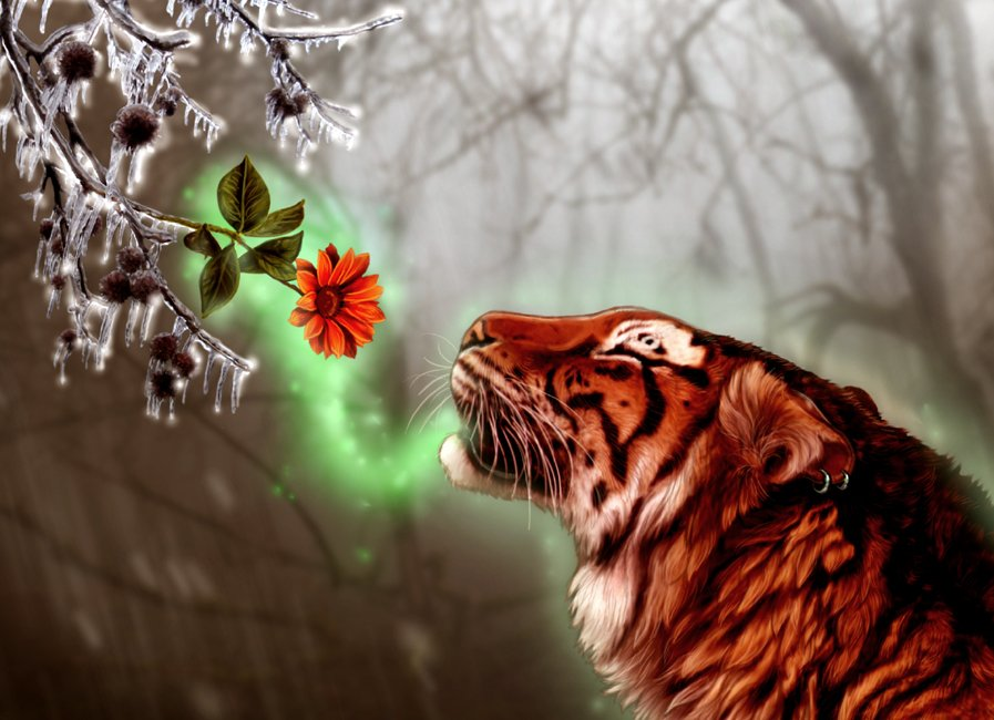 кадрах картинки тигры с розами приведу несколько упражнений