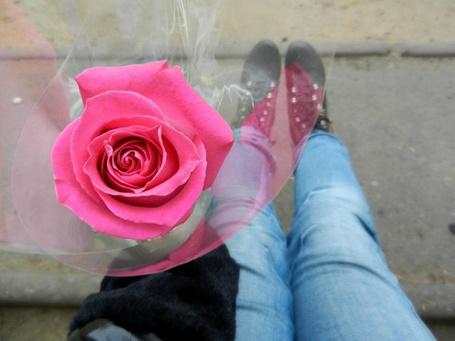 Фото У девушки в руке роза (© Julia_57), добавлено: 03.03.2013 11:50