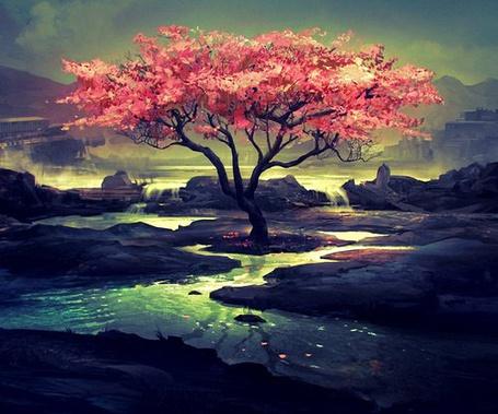 Фото Цветущее дерево возле воды (© Флориссия), добавлено: 06.03.2013 12:30
