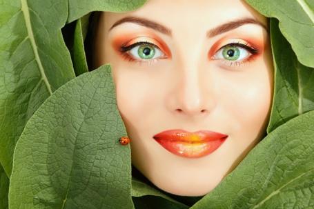 Фото Лицо девушки среди зеленых листьев, по одному из них ползет божья коровка