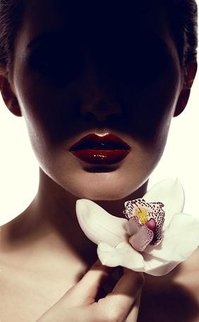 Фото Модель Юлия с орхидеей в руке, фотограф Владимир Коннов
