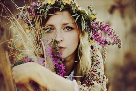 Фото Портрет девушки блондинки с цветочным венком на голове, которая сидит в сухой траве (© Anfila), добавлено: 18.03.2013 00:01
