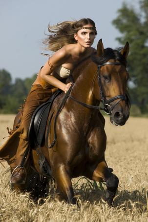 Фото Девушка скачет по полю на лошади (© ), добавлено: 18.03.2013 13:41
