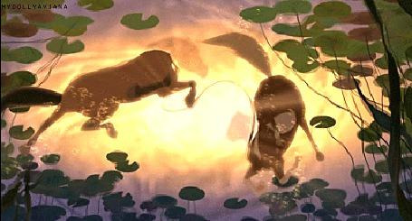 Фото Ласкающиеся и плавающие Спирит и Гроза, момент из мультфильма Спирит, Душа Прерий / Spirit, Stallion of the Cimarron, автор mydollyaviana