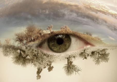 Фото Глаз, вместо бровей и ресниц вокруг него красивый ландшафт
