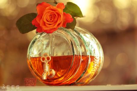 Фото Баночка духов с лежащей розой
