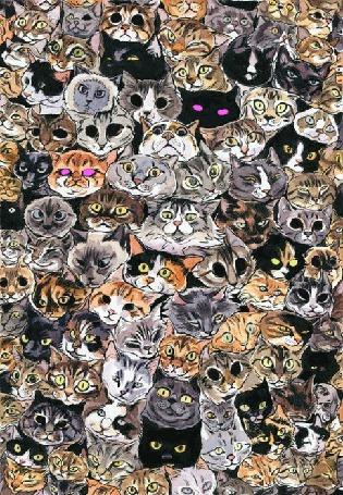 Фото Много нарисованных кошек, у которых мигают глаза
