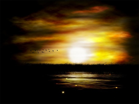 Фото Стая птиц летит на закате (© Венджинс), добавлено: 29.03.2013 17:54