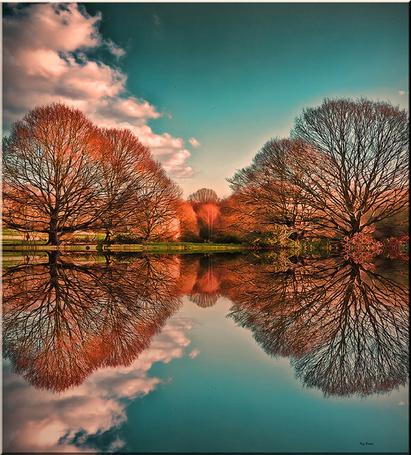 Фото Деревья и облака, отражающиеся в воде, работа Reg Ramai Reflections / отражение (© ), добавлено: 30.03.2013 08:49