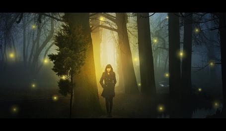 Фото Девушка в волшебном ночном лесу в окружении светлячков, от iNeedChemicalX