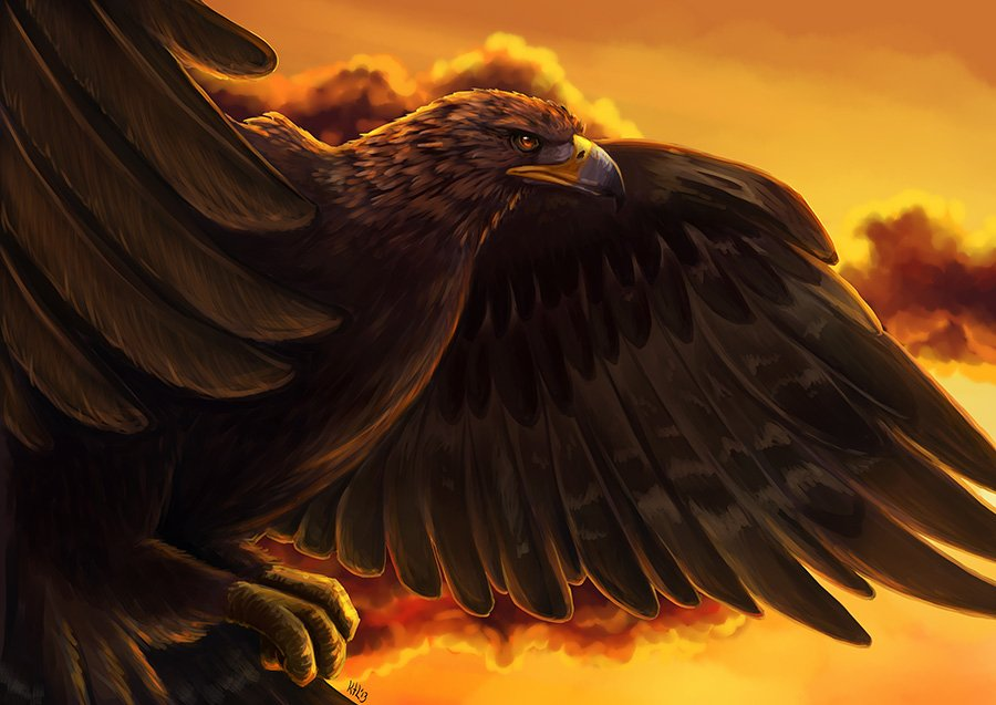 Фото Грозный орел сидит на скале