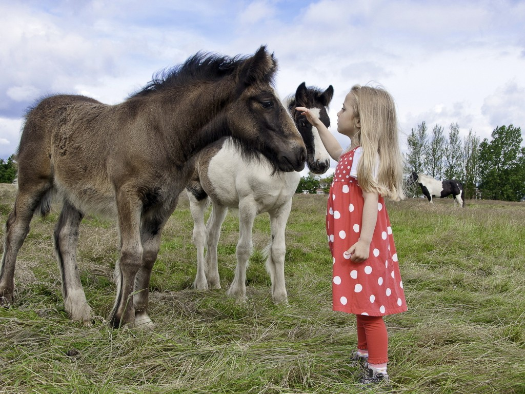 Фото Белокурая девочка с длинными волосами пытается погладить пони, стоящую рядом с ней
