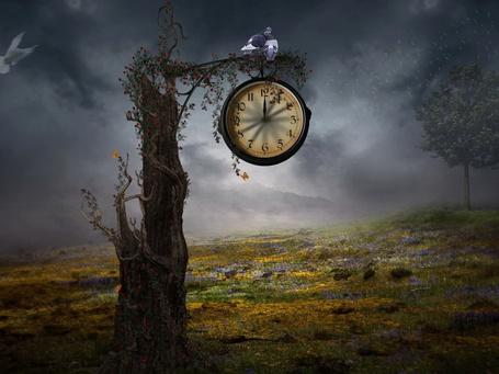 Фото Пара голубей, сидящих над часами, показывающими полночь, расположенными на ветке дерева, ствол которого обвит красными цветами с зелеными листьями на фоне пасмурного ночного неба (© Felikc), добавлено: 27.04.2013 01:05
