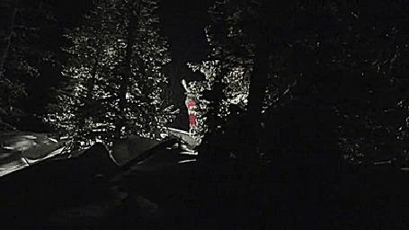 Фото Мужчина на сноуборде через трамплин пролетел между двух деревьев