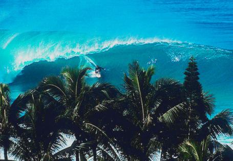 Фото Серфер на морской волне впереди пальмы