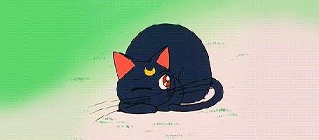 Фото Кошка Луна / Luna из Sailor Moon лежа на земле зевает и подглядывает (© PureEgoism), добавлено: 07.04.2013 18:39