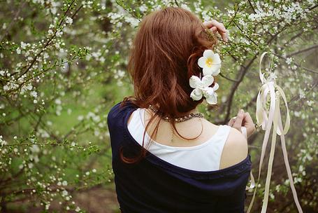 Фото Девушка с белыми цветами в волосах стоит среди цветущих веток