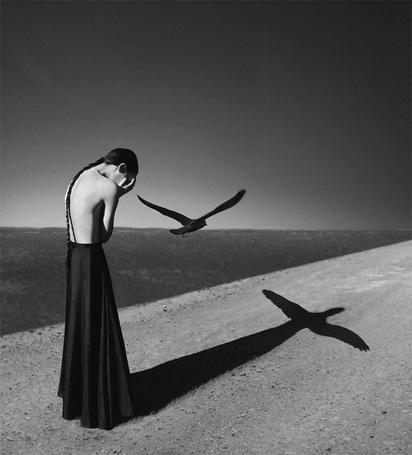 Фото Девушка в черном платье склонила голову на берегу моря, в это время возле нее пролетал черный ворон и на песок упала тень девушки с крыльями